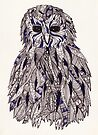 Coloured Little Owl by samclaire