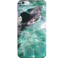 In Balance of Light & Dark iPhone Case/Skin