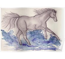 Galloping though Water Poster