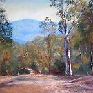 'High Country Track' by Lynda Robinson