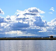 Cervia by fotomagia