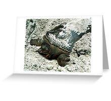 Nesting Softshell Turtle #1. Greeting Card