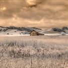 Infrared Barn by Jane Linders