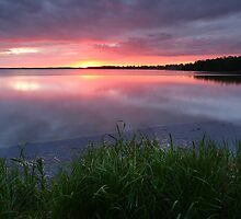 Evening at the lake  by Remo Savisaar