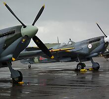 Pair of Spits by Andy Jordan