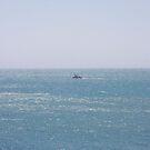 Fishing boat in the Pacific Ocean by Karlim