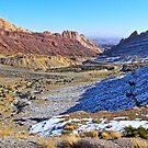 Desert Valley by Benjamin Curtis