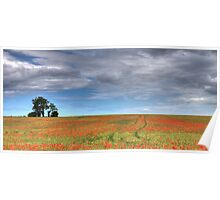 Poppy Field and Lone Tree Poster
