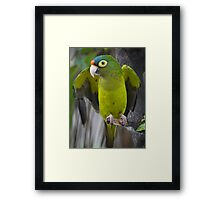 I'm An Ecologist - I'm Totally Green... - Soy Ecólogo - Soy Totalmente Verde Framed Print