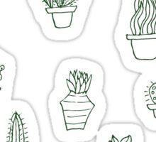 Succulents Sticker