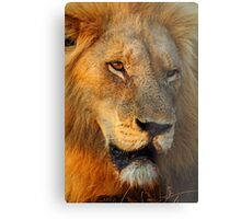 Most wanted! Metal Print