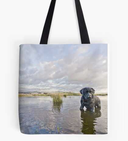 Black labrador, dramatic sky, reflections in water Tote Bag