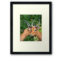 Secrets Framed Print