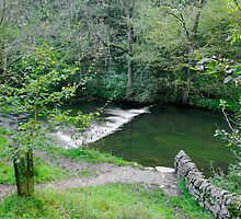 Weir Below Lover's Leap, Dovedale  by Rod Johnson