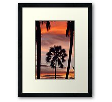Swaying palms Framed Print