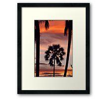 Swaying palms Framed Print