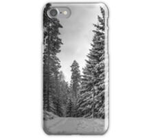 Winter in Forsheda's track II iPhone Case/Skin