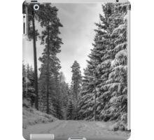 Winter in Forsheda's track II iPad Case/Skin
