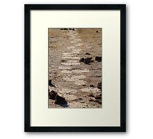 In giants footsteps Framed Print