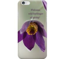 Ode to Spring ~ Crocus iPhone Case/Skin