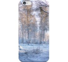 Winter in Forsheda's track I iPhone Case/Skin