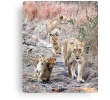 Family Walk Canvas Print