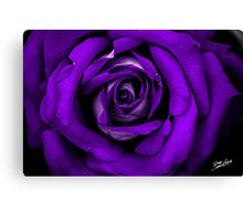 Purple Rose Watercolor Canvas Print