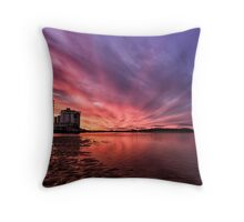 Hangin' With the Pelicans At Sunset Throw Pillow
