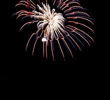 Fireworks Number 6 by olivera kenic