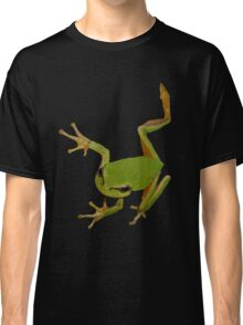 European Green Tree Frog Isolated Classic T-Shirt
