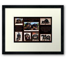 Rottweiler Memories Framed Print
