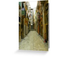 Lost in the alley Greeting Card