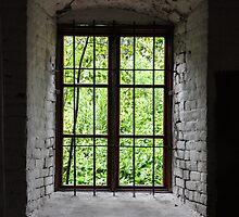 green window by Jari Hudd