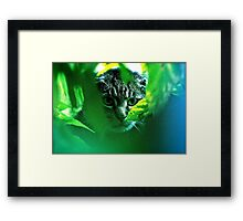 My   F   A   V   O   R   I   T   S  !   Warrior Cats Theme Songs  . by Brown Sugar . Tribute to Wild World - Cat Stevens . VIEWS 3364. Featured . MYSTERIES OF THE PAST AND PRESENT . Has been sold. Framed Print