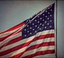 Stars and Stripes by Monica M. Scanlan