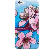 Spring Blooms ~ Cherry Blossoms iPhone Case/Skin