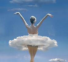 Flying Together by Igor Zenin