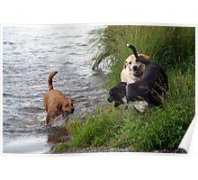 At the Lake Poster