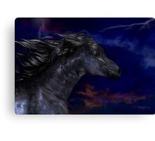 The Dark .. a stallions birth Canvas Print
