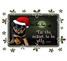 'Tis The Season To Be Jolly Holiday Greetings Photographic Print