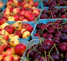 Rainier Cherries by thvisions