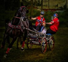 Horsepower part III by Erik Brede