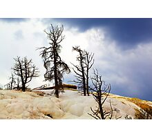 Mammoth hot springs Photographic Print