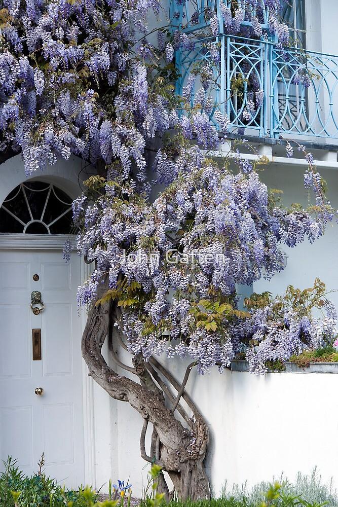 Wisteria balcony by John Gaffen
