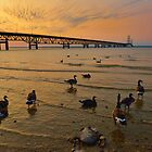 Sunset at the Mackinac Bridge by JimGuy