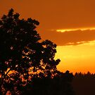 Sunset in Saxony by karina5