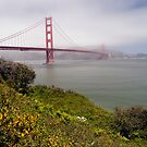 Golden Gate Bridge by Stephen Beattie