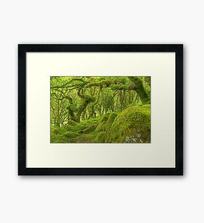 Into the Realm... Framed Print