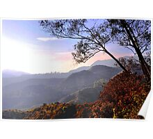 Hollywood Hills.. Poster