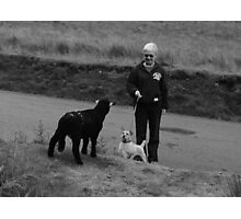 Ginger interviews Black Sheep Photographic Print